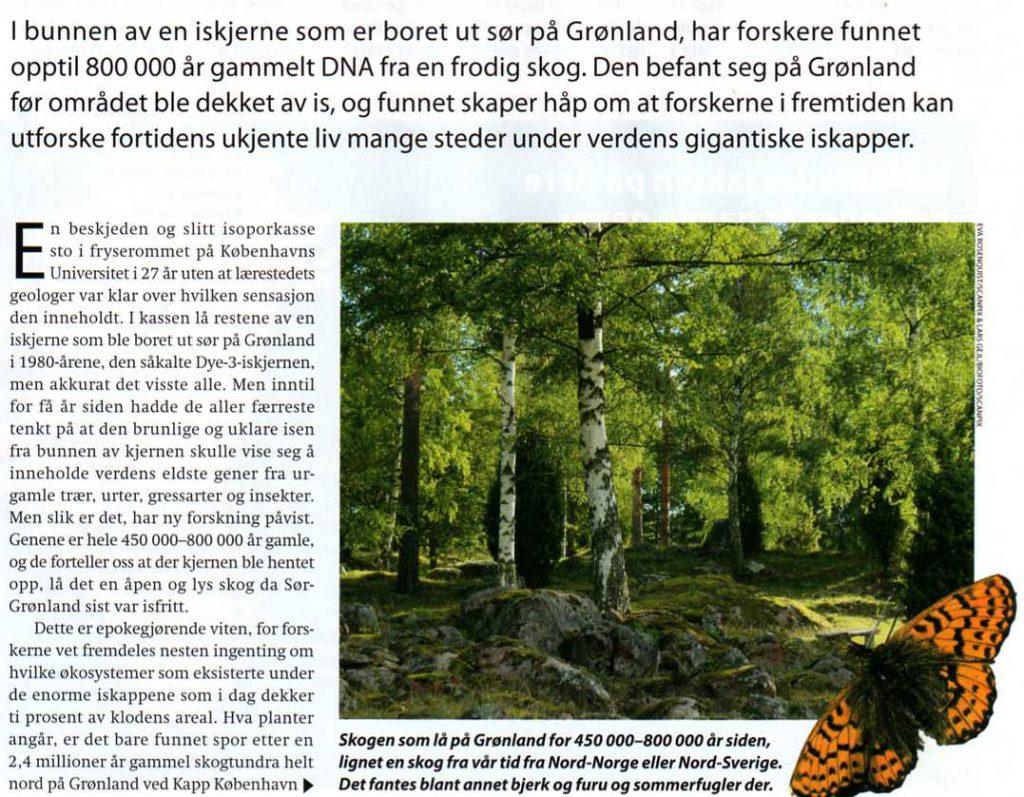urskog-pa-gronland
